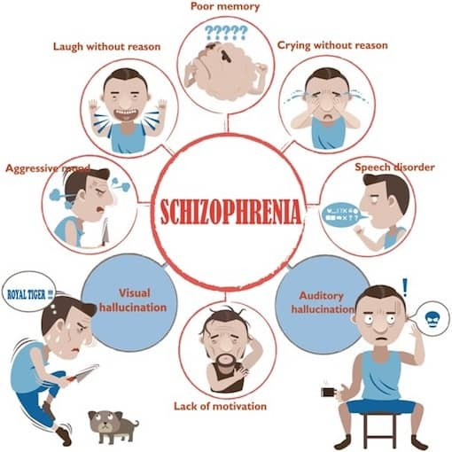 the characteristics and types of schizophrenia a mental disease Schizophrenia is a type of mental illness that affects how the brain works this leads to chronic problems with strange thoughts and behaviors.